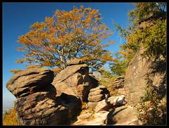 Autumn in Rudawy Janowickie (Rantes) Tags: autumn rocks sudety jesie skay sudetes lowersilesia thebp dolnylsk rudawyjanowickie starociskieskay