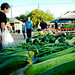 275/365: Coppell Farmer's Market