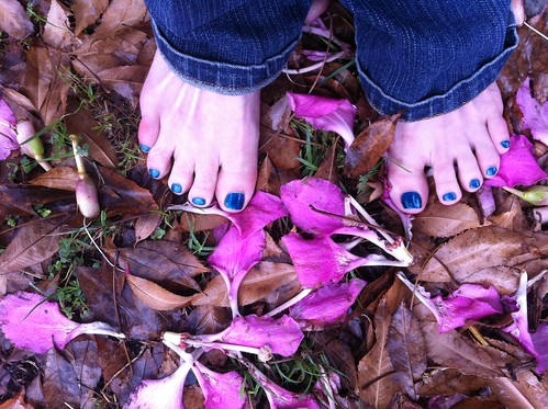 Brown Leaves/Pink Flowers/Blue Toes