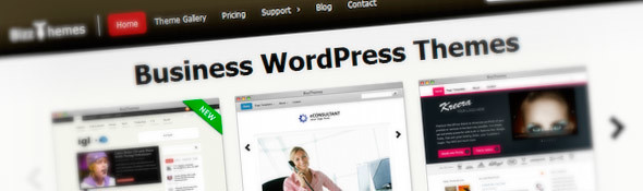 Bussiness WordPress Themes | Bizz Themes