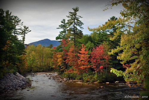 The Saco River, Conway, NH