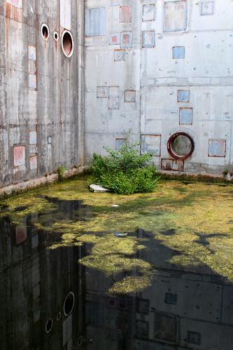 Rio Mohoso Nuclear Reactor