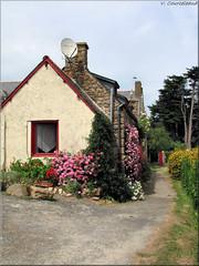 petite maison sur l'ile de Brhat (Vins 64) Tags: ocean mer fleur village ile bretagne maison brehat cotesdarmor leuropepittoresque