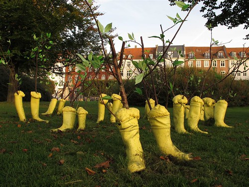 The boot forest