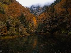 "Following ""Eth Toran"" (series) (Paco CT) Tags: autumn fall forest river landscape spain paisaje otoo esp 2010 riu lleida valdaran warmcolors bausen colorescalidos pacoct arriu valdethtoran ethtoran"