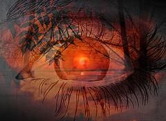 En el iris de tus ojos estalla el reflejo del crepsculo... (conejo721*) Tags: argentina ojo amor palabras mardelplata crepsculo sentimiento poesa poema conejo721