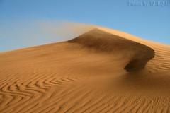 Blowing sand - Explore (TARIQ-M) Tags: texture landscape sand desert ripple dune ripples riyadh saudiarabia potofgold الصحراء canonefs1855 blowingsand الرياض صحراء رمل المملكةالعربيةالسعودية canon400d الرمل خطوط flickrdiamond الرمال sandflows panoramafotográfico تموجات تموج mygearandmepremium desertsandtexture