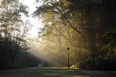 Maandagochtend in Park Sonsbeek (marcoderksen) Tags: park arnhem herfst morgen zon ochtend 2010 zonsopgang sonsbeek maandag vorst najaar groenarnhem