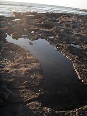 Footprint Tide Pool (dandlymambly) Tags: ocean autumn fall beach oregon coast october hiking tidepools tidal 2010