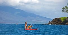 variation on a theme 3: dog paddling (bluewavechris) Tags: ocean red sea dog water girl fun hawaii marine brittany board paddle maui canoe bikini sup pfd wahine