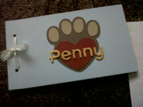 Penny book