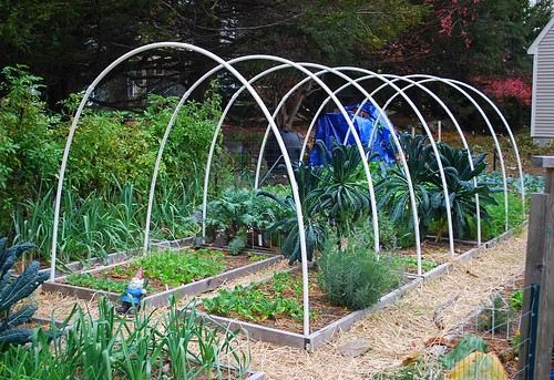 Building hoop house 2