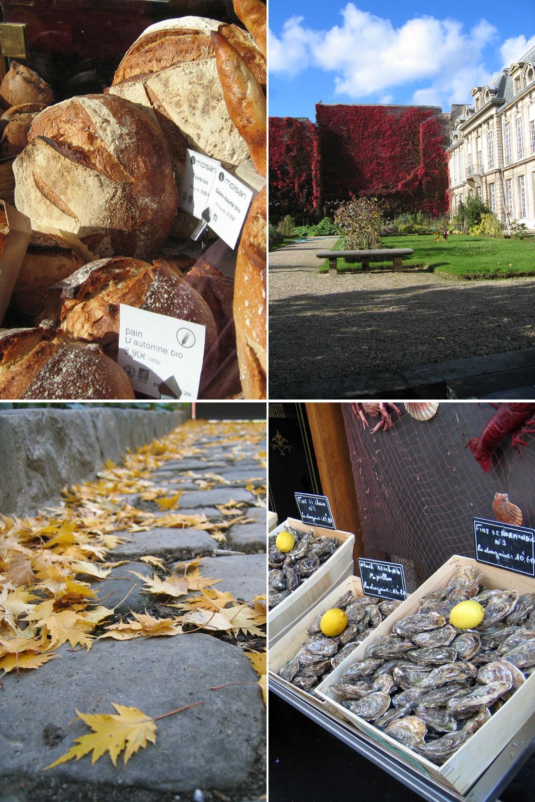Outono em Paris // Autumn in Paris