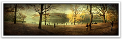... (Pez Brige) Tags: park wood autumn trees sunset sky people dog sun sunlight lake berlin texture dogs leaves photoshop photography see daylight herbst himmel menschen wald bltter bume hunde