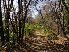 Valley Trail West (iMitchiMac) Tags: park canada edmonton trails alberta paths caminhos dogwalk northsaskatchewanrivervalley