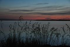 Sdaine Vike vin (anuwintschalek) Tags: sea summer moon night reeds see mond meer estonia nacht sommer july baltic damm ostsee meri itmeri causeway kuu schilf 2010 eesti tamm suvi estland  18200vr nikond90 lnemeri krkjad vanagram vikevin smallstrait viksevinatamm
