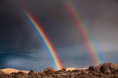 Bonus Rainbow