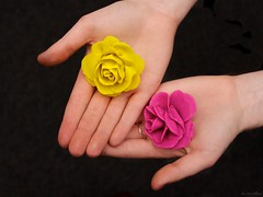 365: 195: Mismatched: Play Dough Roses (jeanmariehoward) Tags: november roses rose hands hand dough ring 365 playdough mismatched canoneos40d playdoughroses