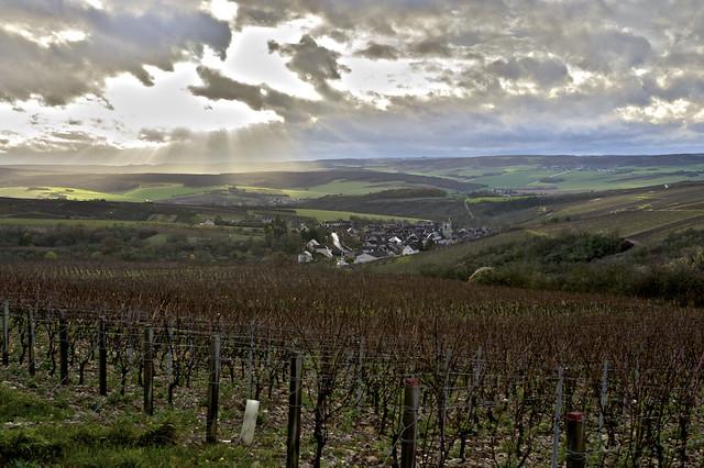 Irancy-Bourgogne