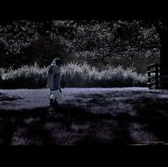 White Bear (h.koppdelaney) Tags: life bear light shadow white tree rabbit art loss up childhood digital photoshop lost child play symbol magic dream picture philosophy blow fantasy metaphor symbolism searching psychology archetype koppdelaney
