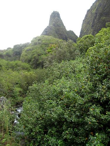 'Iao Needle - Maui
