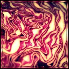 So we had fish tacos for dinner (Sarah B in SD) Tags: texture closeup purple vegetable cabbage picnik edit macromondays