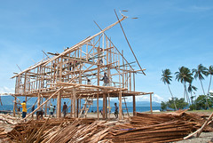 Festival preparations 1 (Sven Rudolf Jan) Tags: building papuanewguinea alotau milnebay janhasselberg canoekundufestival