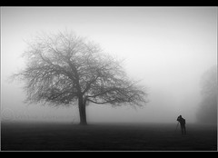Thinking alike...... (Chrisconphoto) Tags: trees blackandwhite mist cold photographer happydays chrisconway goodlight sherdleypark