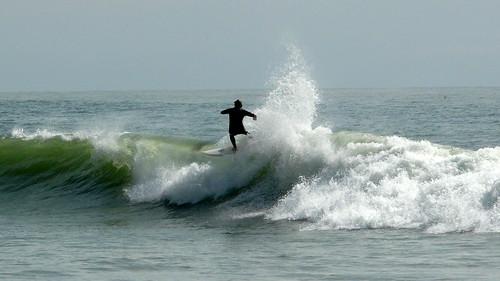 Au large, quelques dauphins, et des surfers
