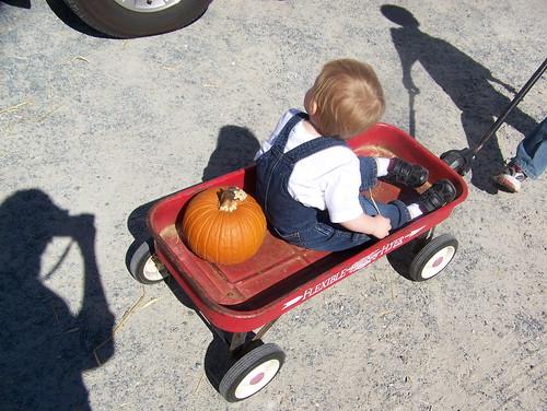 101016 Pumpkin Patches 74 - Coleman