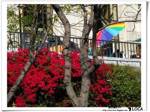 02-SF-City-IMG_6459.jpg
