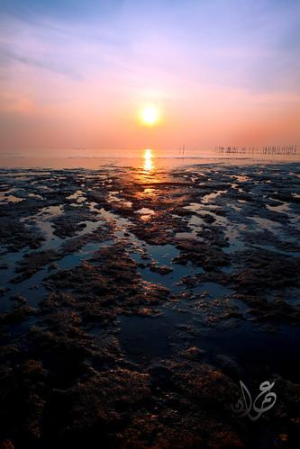 Low tide, Muar, Johor
