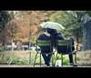 rain or shine (millan p. rible) Tags: street cinema paris france rain canon movie still candid stranger cinematic jardindestuileries 135l rainorshine canonef135mmf2lusm canoneos5dmarkii 5d2
