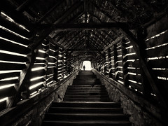 Light at the End of the Tunnel (Feldore) Tags: wood bridge wooden vampire walk eerie medieval dracula spooky walkway romania figure sighisoara transylvania mchugh vlad impaler tunnnel feldore