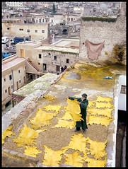 Morocco Fes Tannery (Sha_j) Tags: film 645 morocco 6x45 fes c41 selfdevelopment fujipro160s tetenal fujifilmga645