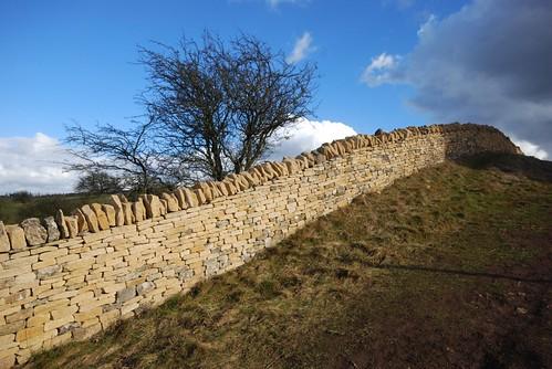 Repared wall
