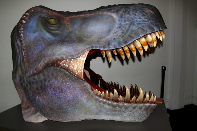 T rex reconstruction