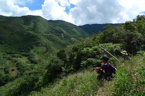 Resting in a coca field - Chulumani, Bolivia