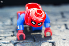 Spider-Man Wall Climb (jezbags) Tags: lego legos toys toy minifigures minifigure macro macrophotography macrodreams macrolego canon60d canon 60d 100mm closeup upclose spiderman marv marvel marvelstudios legomarvel wall climb home homecoming