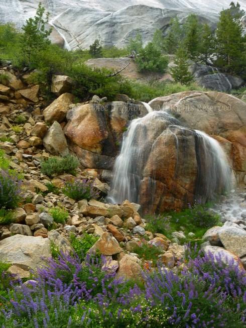 Tenaya Falling Water