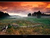 "untitled (D.Reichardt) Tags: longexposure sky tree nature fog clouds germany landscape evening europe filter untitled moorland cokin stubben bokel ""flickraward"""