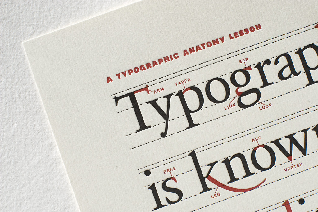 A Typographic Anatomy Lesson