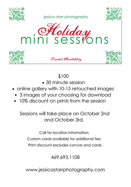 holiday minis 2010 copy