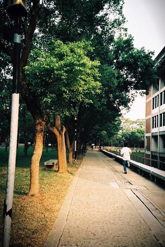 東海大學圖書館左側