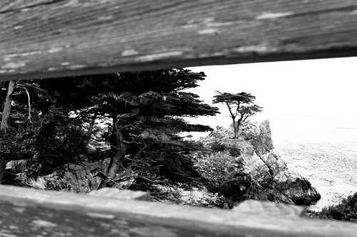 Monterey Sept 2010 126