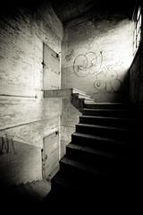 In Less Than a Mile, Plate 2 (Thomas Hawk) Tags: usa abandoned stairs graffiti unitedstates fav50 10 michigan unitedstatesofamerica detroit fav20 urbanexploration 25 fav30 packard packardplant urbex fav10 fav25 fav40 superfave detroit0610dmu