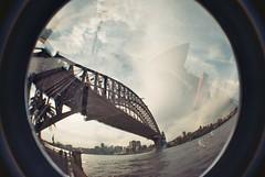 Sydney Harbour MX
