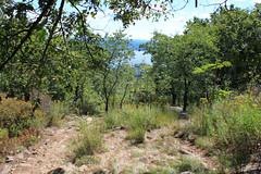 Hiking Down The Mountain (Nicholas Rinaldi) Tags: mountain ny newyork mountains nature hiking trails bearmountain hudsonriver overlook palisades
