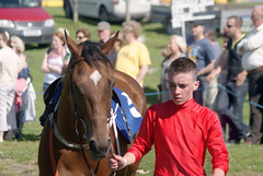 In the parade ring (Frank Fullard) Tags: horse festival strand fun racing parade pony jockey mayo doolough fullard geesala paradering frankfullard