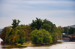 Kampa Island (Naroh) Tags: trees river island praha praga czechrepublic vltava kampa